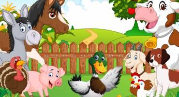 Puzzle – Gus à la ferme
