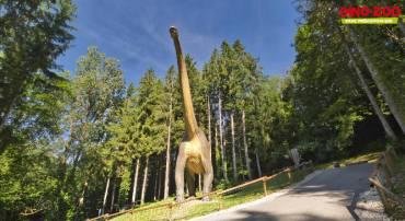 Jeu N° 33 – Gus au parc Dino-Zoo